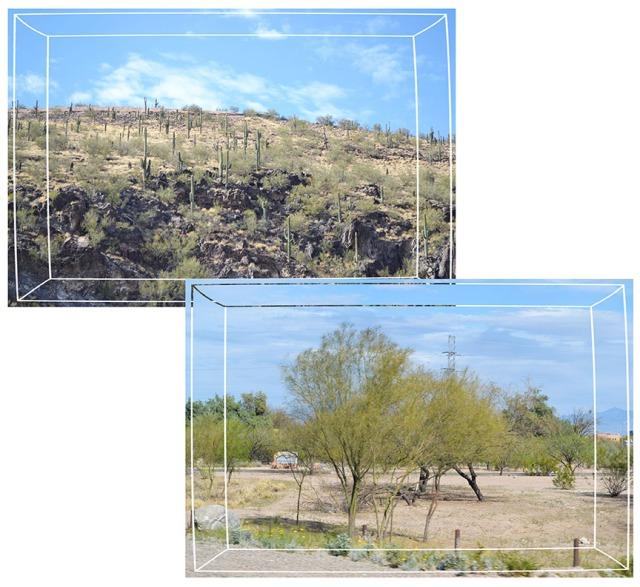 Tucson2013_1