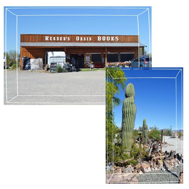 Tucson2013_6